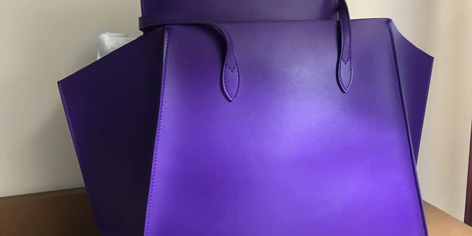 WellSpring Purple Purse
