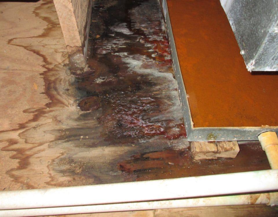 Superior CoOp HVAC - Furnace Water Leak