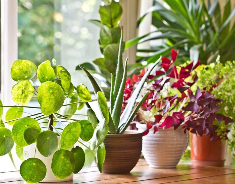 Superior Co Op HVAC - Indoor Air Quality Lowering VOCs